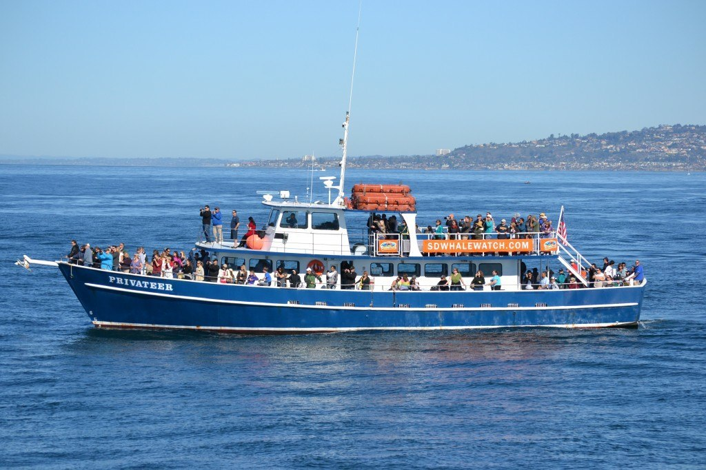 SD Whale Watch Privateer