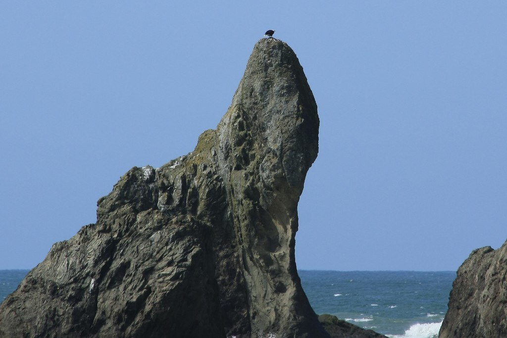 La Push Olympic Peninsula